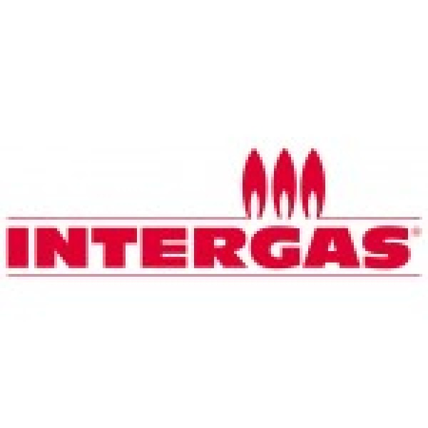 Intergas 801537 Ignition Module