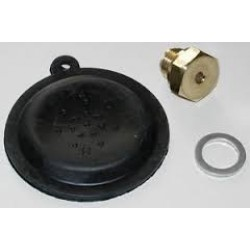 Diaphragm/Repair Kits