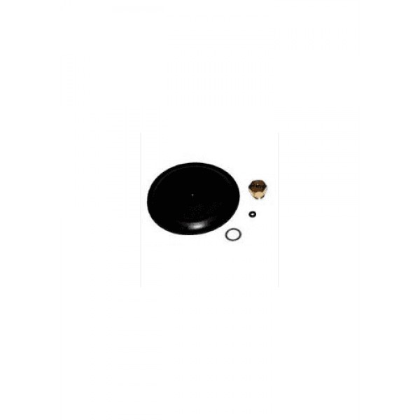 Alpha 6.1000765 Diaphragm Kit